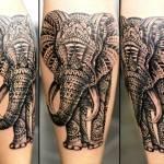 פיל אפריקאי שחור אפור