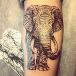פיל אפריקאי מורכב