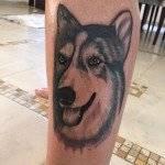 קעקוע זאב ליד