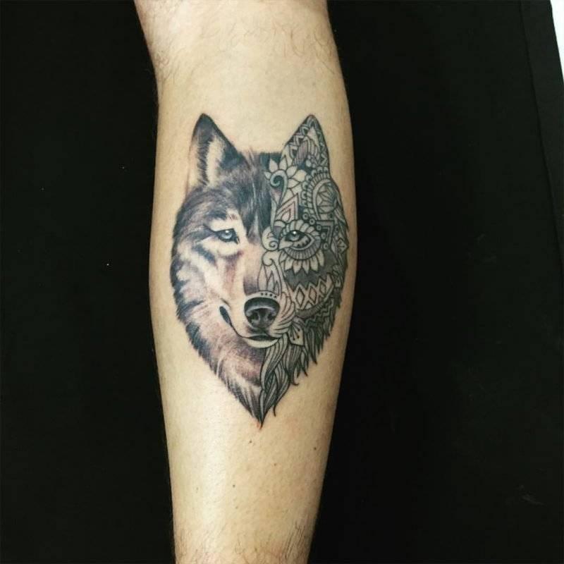 חצי זאב חצי טרייבל