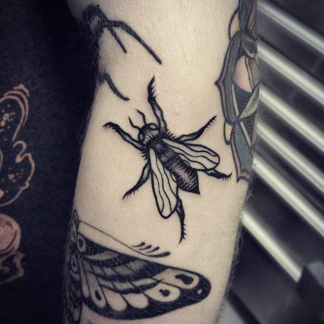קעקוע חרק שחור
