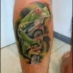 צפרדע ריאליסטית